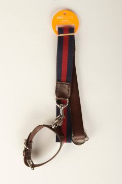 Blue and red striped grosgrain leash with leather collar